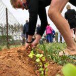 Schule-Luneburg-Skool-Boomplantdag